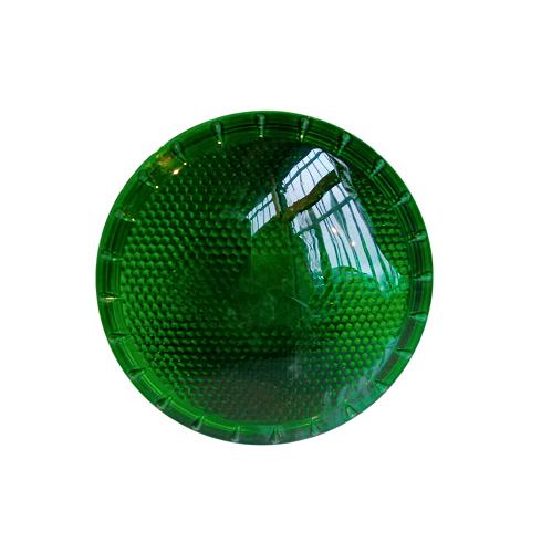 Dark Night 100W - Agrolite - Ampoule Verte