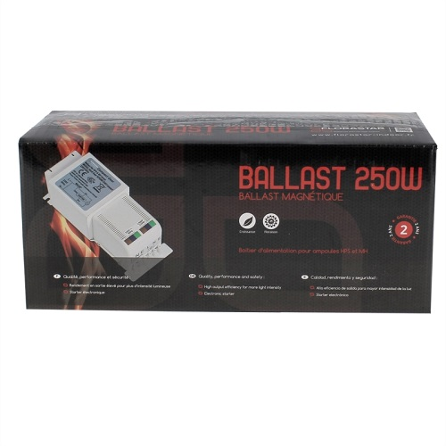 BALLAST MAGNETIQUE COMPACT 250W PACKAGE FLORASTAR