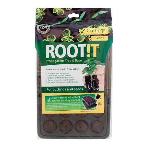 ROOT IT PLATEAU 24 EPONGES