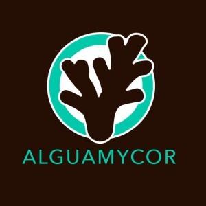 Alguamycor® Stimulant Racinaire 10Kg sceau - GUANO DIFFUSION