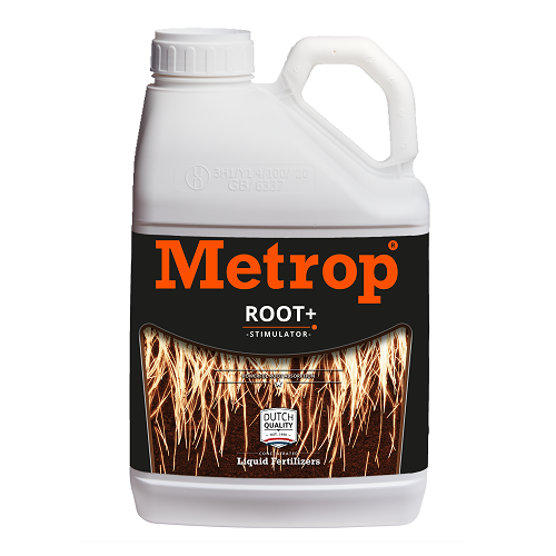 ROOT + 5L METROP
