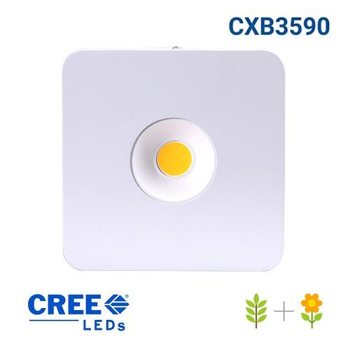 Panneau LED P250WX Leds COB - ultra puissant et ultra compact - denrière génération