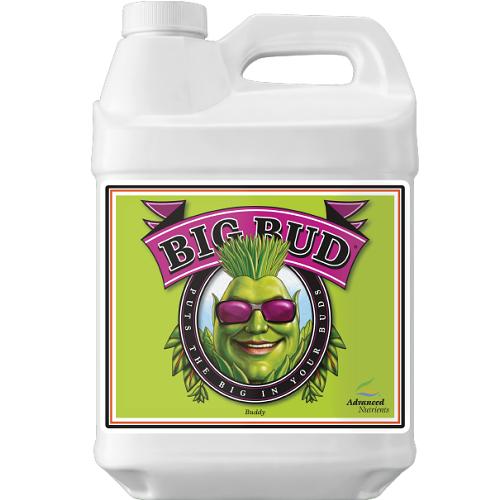 Big Bud 250ml - Advanced Nutrients